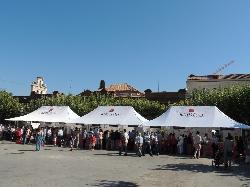 El sábado 25 por la mañana, mercado de Alimentos de Madrid en la Plaza de Cervantes
