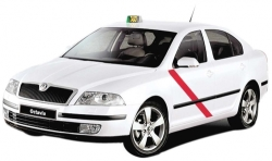 La Comunidad de Madrid evitará el intrusismo en el sector del Taxi