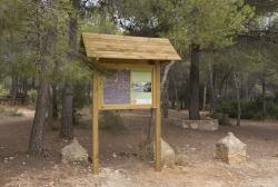 Nueva ruta senderista al paraje natural del Clot de les Tortugues en Picassent