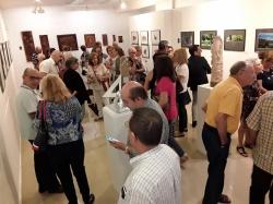 """L'exposició """"Dona i Aigua"""" podrà ser visitada fins al proper divendres al Museu Comarcal Horta Sud de manera gratuïta"""