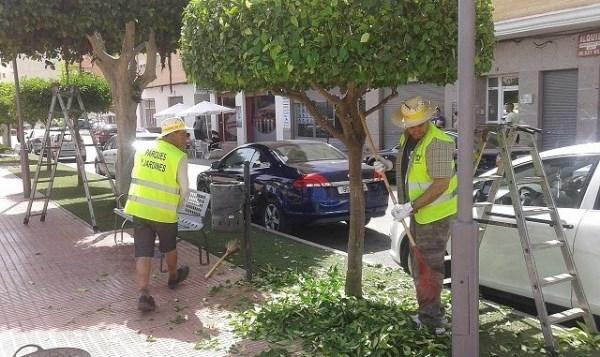 Callosa pone en marcha el plan de empleo para la limpieza de zonas verdes