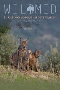 WILDMED. El último bosque mediterraneo