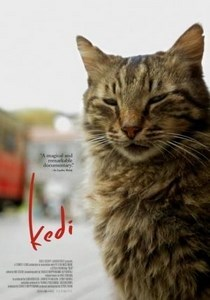 Kedi - Gatos de Estambul (VOSE)
