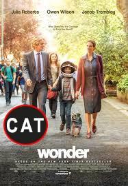 Wonder  (DIGITAL CATALÀ)