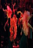Opera: Los cuentos de Hoffmann - MET LIVE 14-15