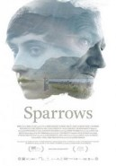 Sparrows (Gorriones)