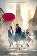 Animales fantásticos y dónde encontrarlos. (3D)