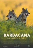 Barbacana: La huella del lobo