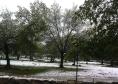 Nevando en Moralzarzal