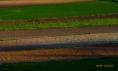 Campos de labor en Fontanars dels Alforins